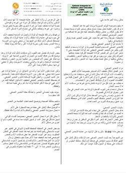 http://www.zulekhahospitals.com/uploads/leaflets_cover/13Epidural-Analgesia-for-Painless-Labor-Educational-Leaflet-Arabic.jpg
